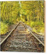 Track To Nowhere Wood Print