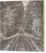 Tracks Bw Wood Print