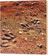 Tracks On Mars Wood Print