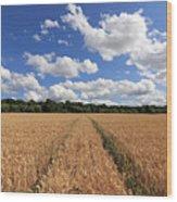 Tracks Through Wheat Field Wood Print