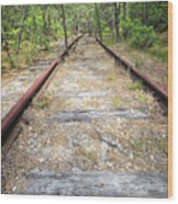 Tracks To Nowhere Wood Print