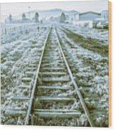 Tracks To Travel Tasmania Wood Print