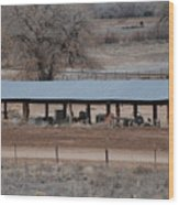 Tractor Port On The Ranch Wood Print