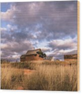Traditional Hut Of Madagascar Countryside Wood Print