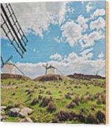 Traditional White Windmills  Wood Print