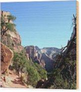 Trail - Zion Park Wood Print