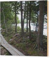 Trail At Jordan Pond Wood Print