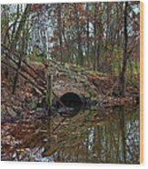 Trail Bridge Wood Print