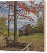 Trail Cabin Wood Print