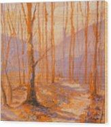 Trail Eight Wood Print