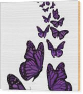 Trail Of The Purple Butterflies Transparent Background Wood Print