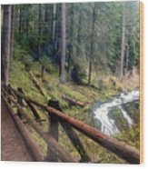 Trail Over Sol Duc Falls Bridge In Olympic National Park Wood Print