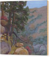 Trail Ridge Road Wood Print