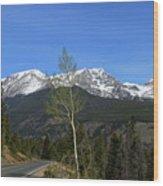 Trail Ridge Road May 2017 Wood Print
