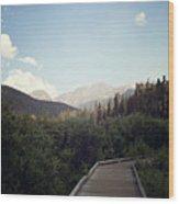 Trail Ridge Road Wood Print