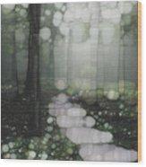 Trail Series 5 Wood Print