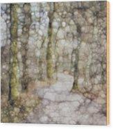 Trail Series Wood Print