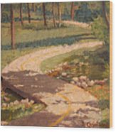 Trail Shadows Wood Print