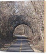 Trail Through History Wood Print