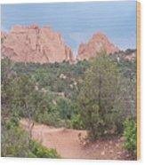 Trail Through The Garden Wood Print