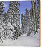 Trail Through Trees Wood Print by Garry Gay