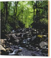 Trail To Chimney Top Wood Print