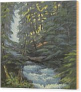 Trail To The Falls Wood Print