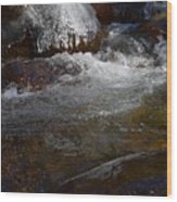 Trail To Tokopah Falls Wood Print