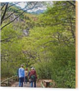 Trail To Waterfall In Vicente Perez Rosales National Park Near Puerto Montt-chile Wood Print