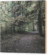 Trail Walking  Wood Print