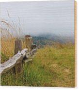 Trail With Coastal Morning Fog Wood Print