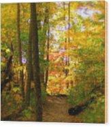 Trailhead Light Wood Print by Ed Smith
