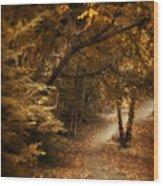 Trailing Autumn Wood Print