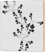 Trailing Leaves Wood Print
