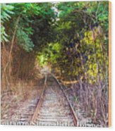 Trails Of Tracks Wood Print