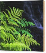 Trailside Plants Wood Print