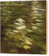 Train Ride II Wood Print
