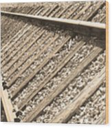 Train Tracks Sepia Triangular  Wood Print