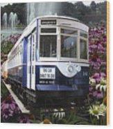 Trains Brookfield Zoo Trolley Car 141 Wood Print