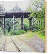 Trains Over And Under Wood Print