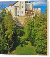Trakoscan Castle And Green Lake  Wood Print