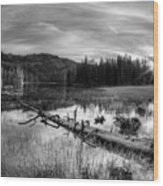 Tranquil Black And White 5 Wood Print