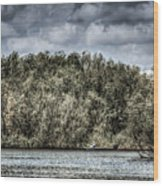 Tranquil Fishing Spot  Wood Print