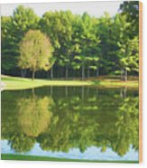 Tranquil Landscape At A Lake 2 Wood Print