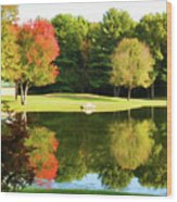 Tranquil Landscape At A Lake 3 Wood Print