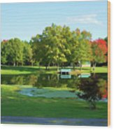 Tranquil Landscape At A Lake 5 Wood Print