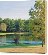Tranquil Landscape At A Lake 6 Wood Print