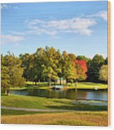 Tranquil Landscape At A Lake 9 Wood Print