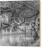 Tranquil May 2016 Bw Wood Print
