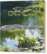 Tranquil Pond Wood Print